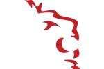 roar-media logo