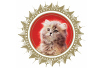 gorgeous-enterprises logo