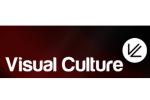 visual-culture logo