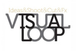 visual-loop logo