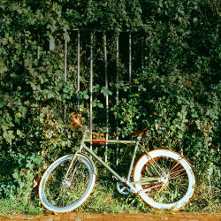 An Amsterdam Bicycle Story by Veloretti