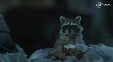 Raccoons, C'mon Try It! - It's What You Do - GEICO