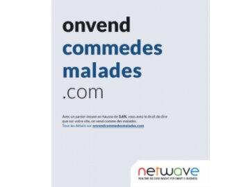 onvendcommedesmalades.com