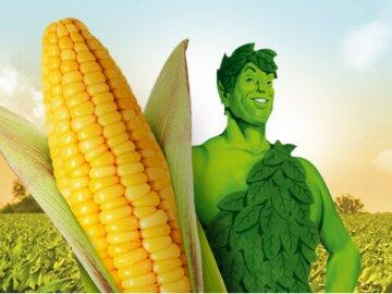 Géant Vert - C'est ma récolte