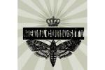 media-curiosity logo