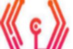 webby-central-website-design-agency-in-boston logo