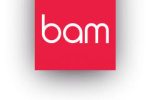 bam-strategy logo