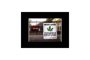 Smoke Grass B